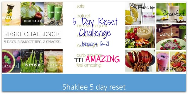 5-day-reset-cover