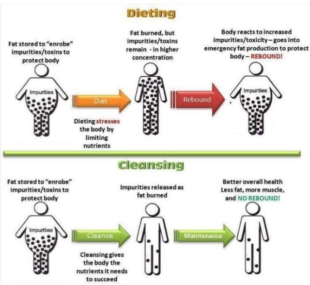 dietingvscleansngsuniferrer